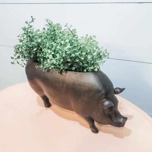 Pig Planter Farmhouse decor